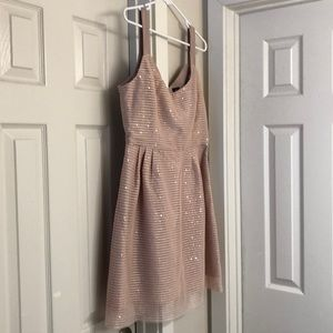 Delicate Sequined Blush Dress